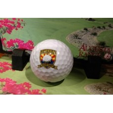 20XI Nike Golf Balls - Short Course Logo